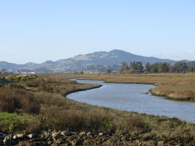 Hamilton Wetlands, Marin County